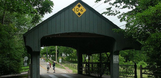Village may privatize roads