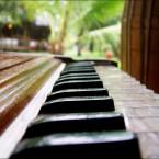 Harmonium Qawwali Music