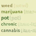 Slang terms for marijuana - final