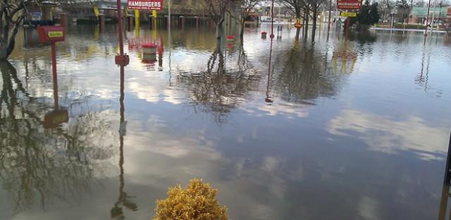 Lee/Mannheim Rd, Des Plaines: Photo of the Day - April 22, 2013