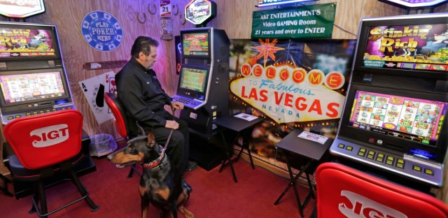 In this Nov. 10, 2014 photo, Michael Vena, owner of Arabian Knights Farms and Training Center, along with his dog Valor, shows off the farm's gaming room in suburban Willowbrook.