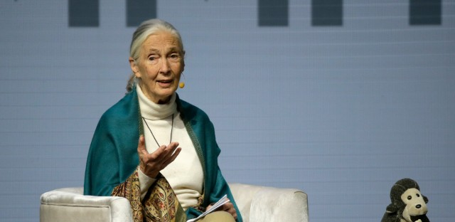 Jane Goodall, Primatologist and United Nations Messenger of Peace, addresses the Global Action Climate Summit Friday, Sept. 14, 2018, in San Francisco. California Gov. Jerry Brown's international climate summit wraps up Friday with a call to action on reducing greenhouse gas emissions, increasing renewable energy and other Earth-friendly initiatives ahead of the next United Nations climate meeting in 2020.