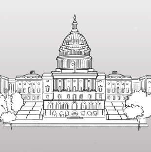 Congress graphic