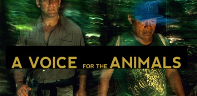 On Being : Alan Rabinowitz — A Voice for the Animals Image