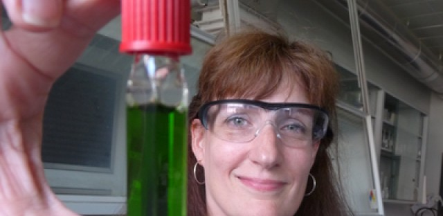 Lisa Utschig holds a vial of the protein active in photosynthesis.