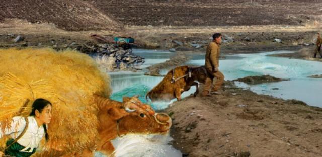 Weekend Passport: 'North Korean Perspectives' photo Exhibit