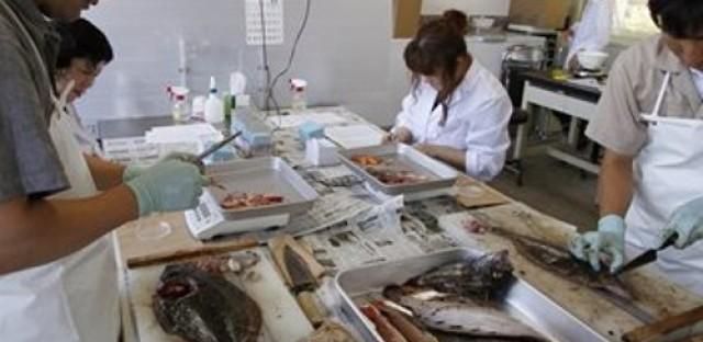 Impact of Fukushima contamination remains unclear