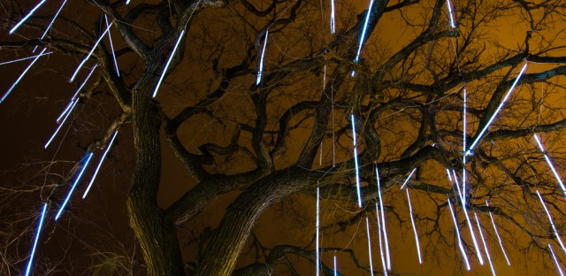 Light Drops: Lincoln Park Zoo's ZooLights.