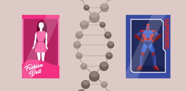 Hidden Brain : The Edge of Gender Image