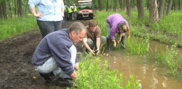 Volunteers plant native plants at Hegewisch Marsh last Saturday.