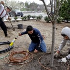 Workers with H-2B visas, which are issued for seasonal nonagricultural jobs, install an irrigation system.