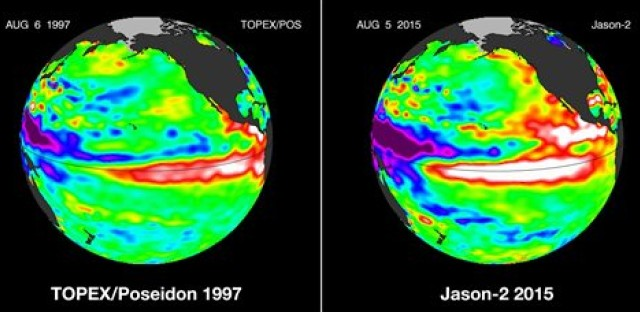 These false-color images provided by NASA satellites compare warm Pacific Ocean water temperatures from the strong El Nino that brought North America large amounts of rainfall in 1997, left, and the current El Nino as of Aug. 5, 2015, right. Warmer ocean water that normally stays in the western Pacific, shown as lighter orange, red and white areas, moves east along the equator toward the Americas. Forecasters say this El Nino is already the second strongest on record for this time of year and could be one of the most potent weather changers in 65 years.