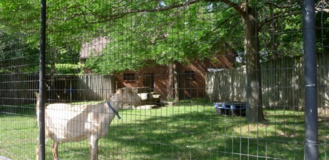 West Ridge residents angry over zoo plans