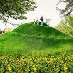 Horner Park Mound