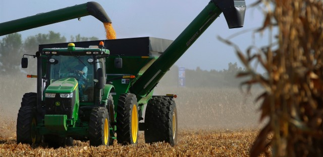 Central Illinois farmers harvest their corn crops Wednesday, Sept. 14, 2016, in Loami, Ill. The men and women who grew what's expected to be the biggest corn crop the United States has ever seen won't benefit from the milestone. Prices are so low that for the third consecutive year, most corn farmers will spend more than they earn. It's a similar story for soybean producers.