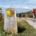 A photo of the Camino de Santiago pilgrimage trail in Spain.