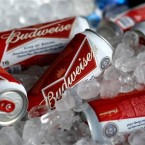 Budweiser and Miller Lite may merge to become the biggest suds dealer on the planet