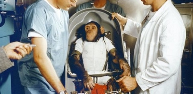50th anniversary of first ape in space