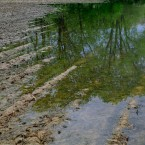 Illinois Farmers Hit Hard By Historic Wet Weather