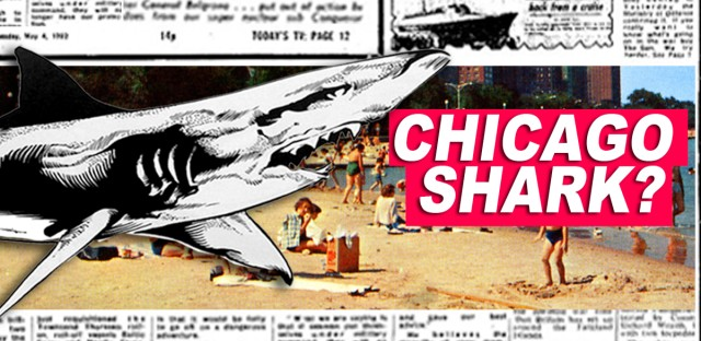 Rumor has it a young George Lawson was attacked by a shark while swimming at a Chicago beach in 1955. Is it true, or just a bunch of bull shark?