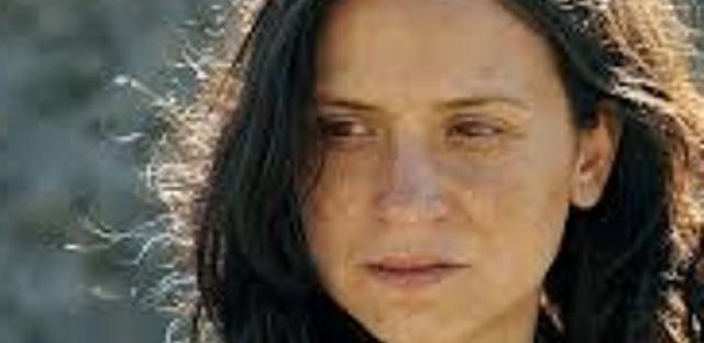 Global Cinema: Milos Stehlik on Violeta Went to Heaven