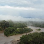 The Ecuadorian Amazon rainforest.