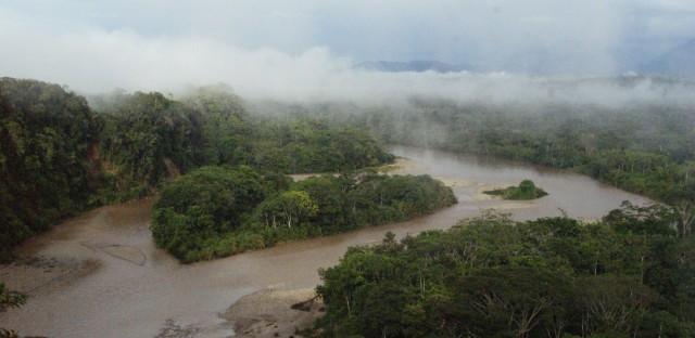 The Ecuadorian Amazon rainforest.