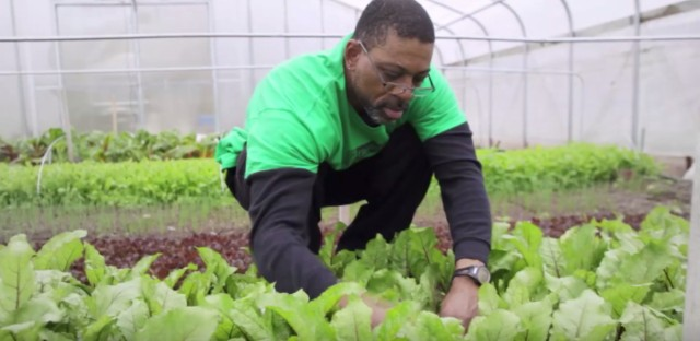 Benefit Chicago will funnel $100 million in investments to social sector businesses like the Growing Home farm.