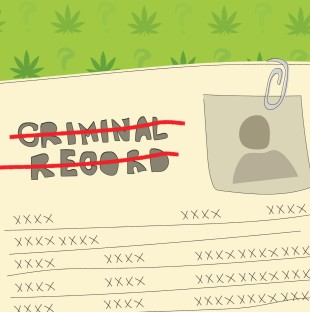 An illustration of a criminal record with marijuana leaves in the background. The words 'criminal record' are crossed out.