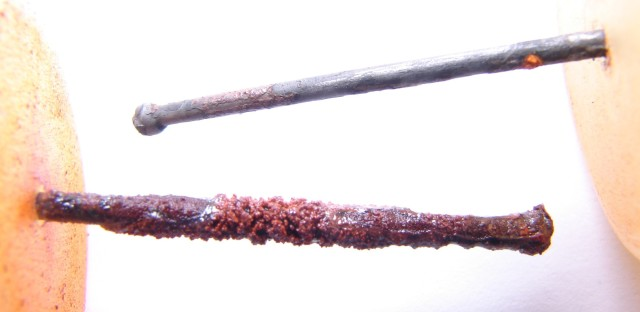 A nail after one month of exposure to Detroit water (above) and Flint River water (below) Each nail was rinsed in flowing water before taking the picture.