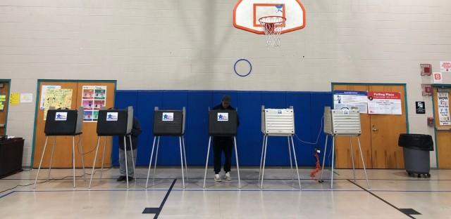 Voting Illinois Primary Election
