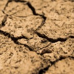 soil/drought dirt