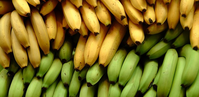 Deadly Fungus Threatening the Future of Bananas in Asia Could Spread around the World