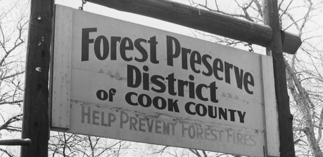 Forest Preserves Thumbnail