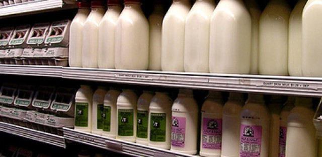 """Milk prices could surge if U.S. goes over """"dairy cliff"""""""