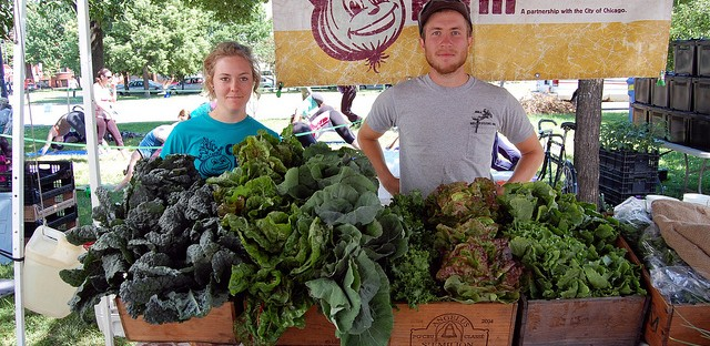 City Farm stand at Logan Square Farmers Market