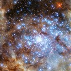 This image from the Hubble Space Telescope shows the central region of the Tarantula Nebula in the Large Magellanic Cloud. The R136 star cluster — the blue stars in the lower right — contains massive stars, including nine newly-identified stars more than 100 times as massive as our sun.