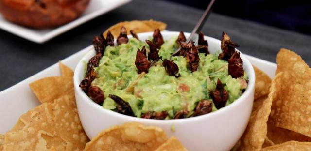 Chapulines, a type of grasshoppers, are commonly eaten in parts of Mexico.