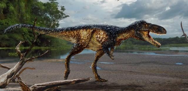 Horse-sized primitive tyrannosaur Timurlengia euotica from the middle Cretaceous (ca. 90-92 million years ago) of Uzbekistan.