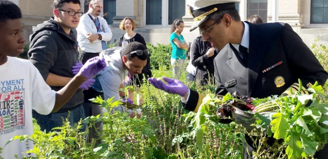 Surgeon General Vivek Murthy looks at a tomato that a Lindblom Math and Science Academy student gardener picked. Murthy joined students as they collected food for the first school garden harvest that would make it into their lunchroom as part of an Eat What You Grow program in Chicago Public Schools.