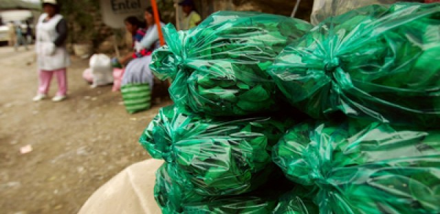 Bags of coca are displayed for sale outside the town of Coroico in Yungas, Bolivia.