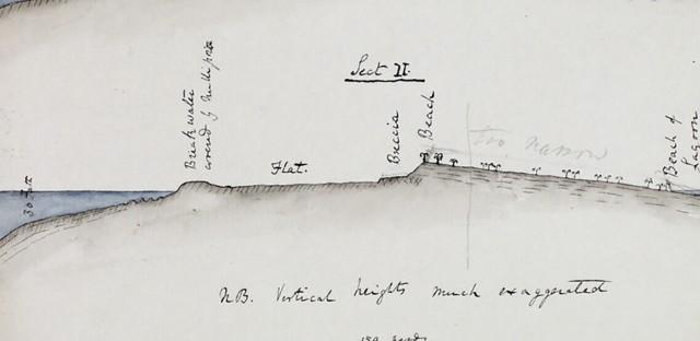 On Being : James Moore — Evolution and Wonder: Understanding Charles Darwin Image