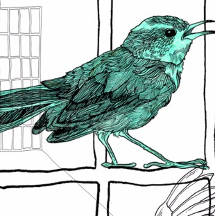 An illustration of a bird sitting on the bars of a prison cell