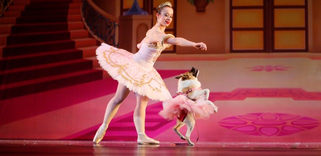 "Performing as the Sugar Plum Fairy, Katherine Free, left, dances during the Birmingham's Ballet Mutt-cracker, a rendition of the famous ballet ""The Nutcracker,"" on Dec. 8, 2016 in Birmingham, Ala."