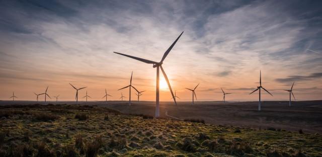 The Whitelee wind farm in Scotland.
