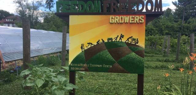 Feedom Freedom is an urban farm in Detroit, Michigan.