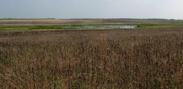 Orland Grasslands