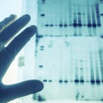 More African-Americans Are Learning Their Roots with Genetic Testing