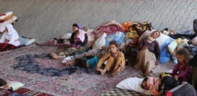 Yazidis ask for US help, Iran bans permanent birth control, and progress in Haiti