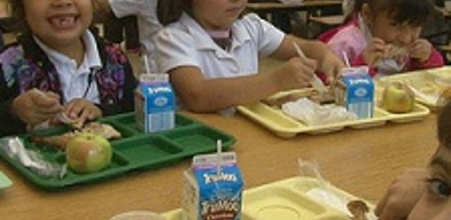 EcoMyths: Is Fresh cafeteria food an oxymoron?
